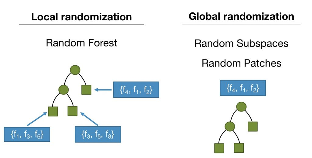 Illustration of local and global feature subset randomization